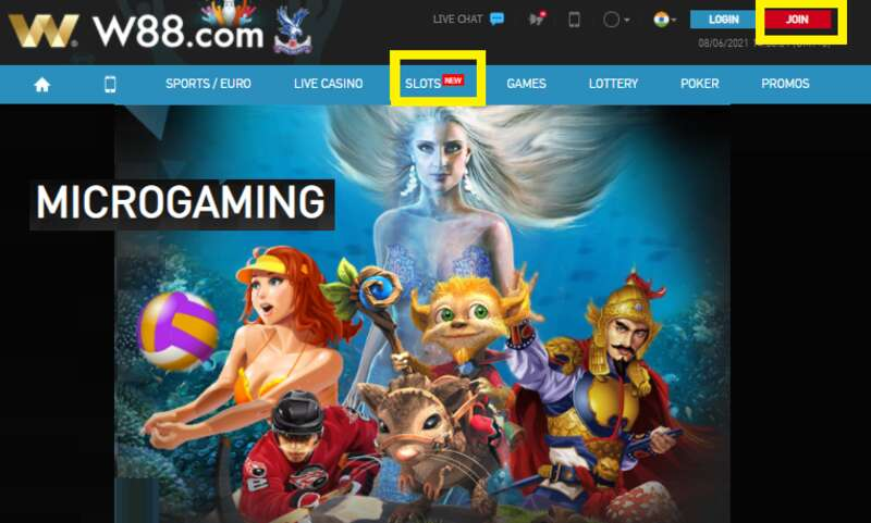 Microgaming - A Cut Above the Rest